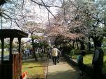 米海軍厚木航空施設)日米親善桜祭り2-4JUMBOセットメニューのホットドック007