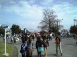 米海軍厚木航空施設)日米親善桜祭り2-4JUMBOセットメニューのホットドック009