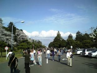 米海軍厚木航空施設)日米親善桜祭り4-4ナチョ001