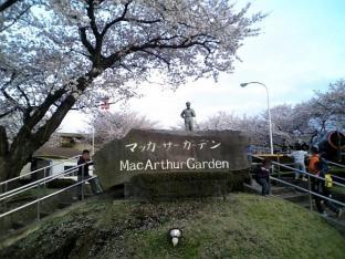米海軍厚木航空施設)日米親善桜祭り4-4ナチョ029