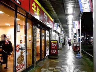 すき家春の(2011年)牛丼(並)250円1