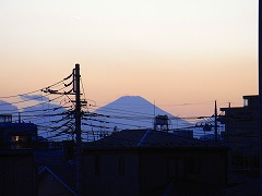 mini_R0012795.jpg