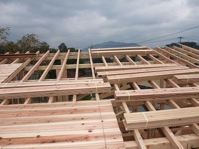 DSCF2659屋根板