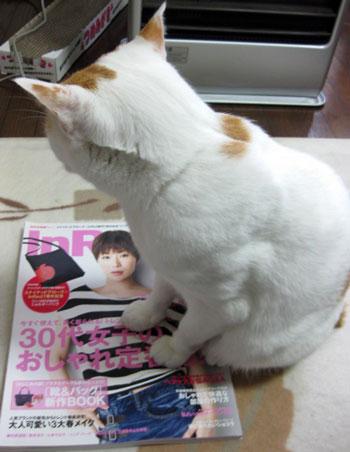 雑誌好きにゃ2-0213