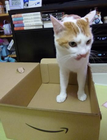 箱だ♪1126-2