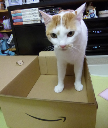 箱だ♪1126-1