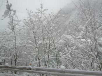 雪景色0124-3