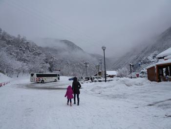 雪景色0124-5