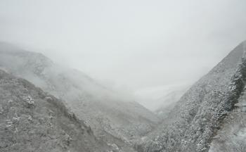 雪景色0124-7