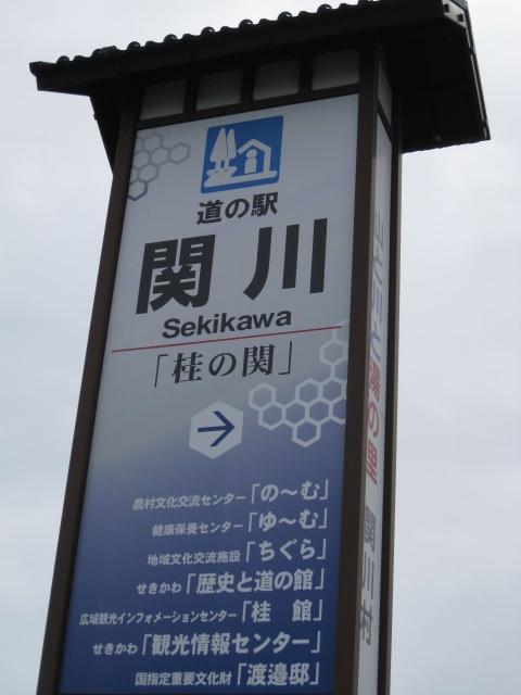 道の駅関川20100310