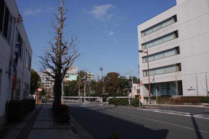 東京スカイツリー20100417-01