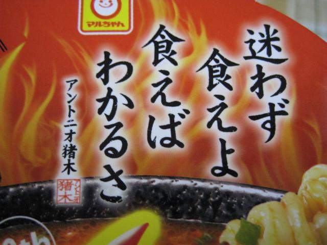 燃える闘魂カップ20100519-04