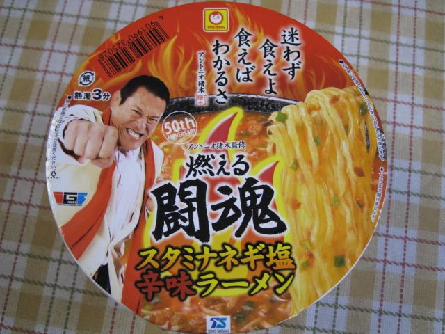 燃える闘魂カップ20100519-01