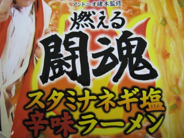 燃える闘魂カップ20100519-02