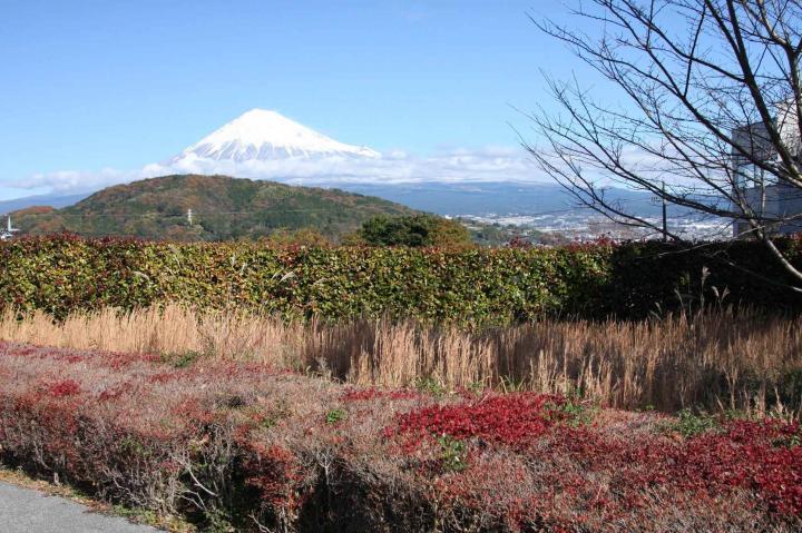 富士川SA20101208-01