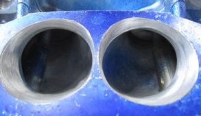 Eg3鼻の穴
