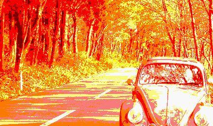 秋の国道2