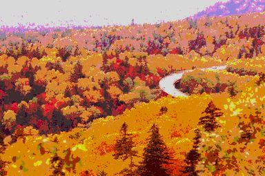 紅葉の国道