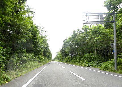 支笏湖ルート
