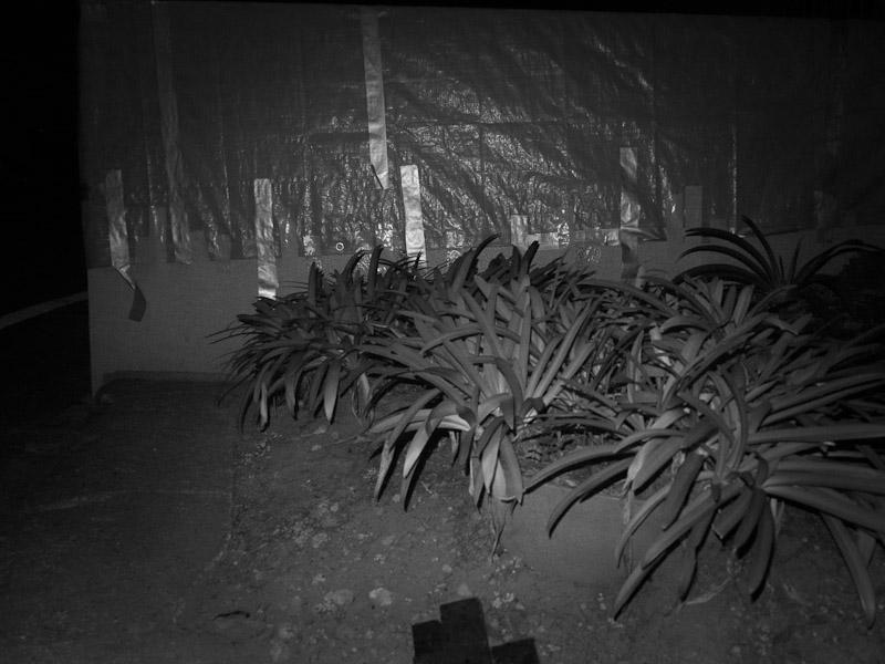 2_night-visions5.jpg