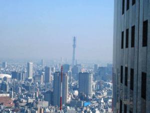 22.12.5東京 024