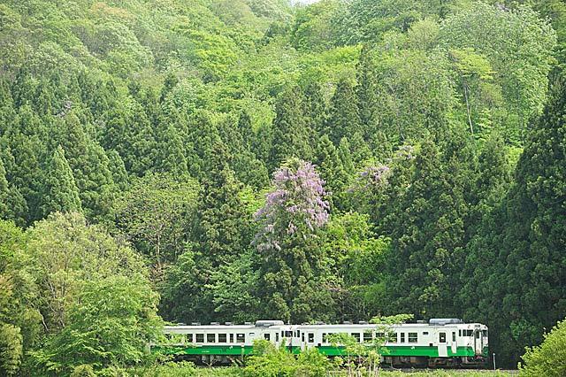 sakamotoyamahuji