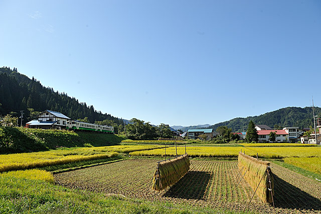 nakagawahiujou