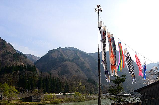 mizunumakoinobori