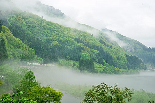 sinryoku