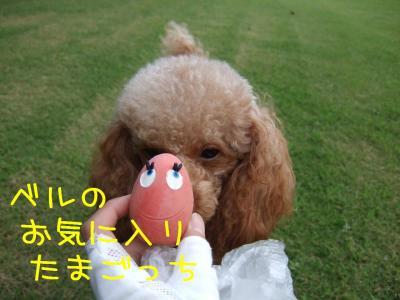 2008_082000021.jpg