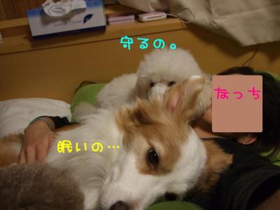 2008_113000231.jpg