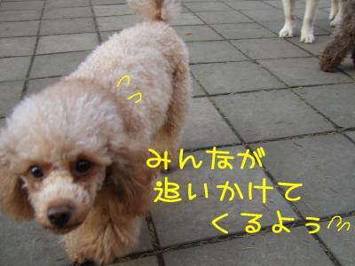 2008_120700281.jpg
