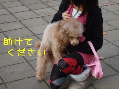 2008_120700301.jpg