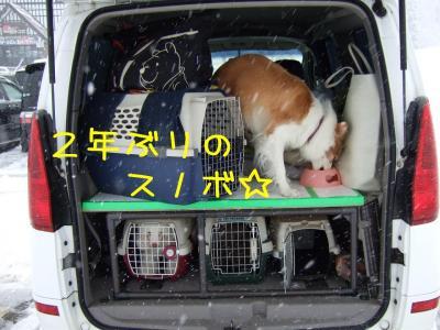 2009_011100381.jpg