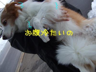 2009_011102421.jpg