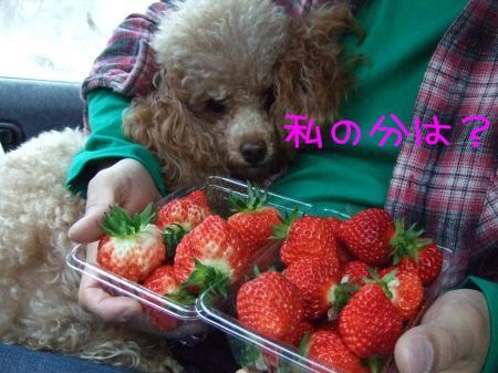 2009_020200321.jpg
