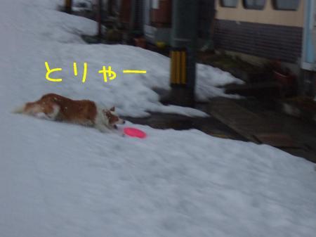 2009_020200441.jpg