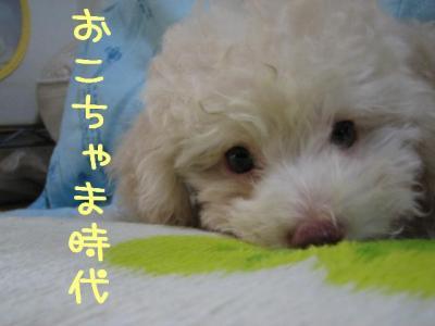 IMG_1262.jpg