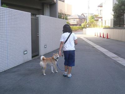 mieとお散歩