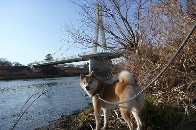 川に行きたいよ~