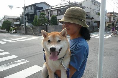 真夏のお散歩