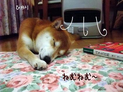熱風パラダイス★