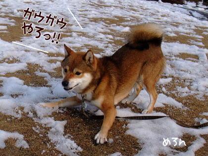 遊ぼうよ~!!