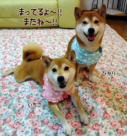 ヨロピクね~☆
