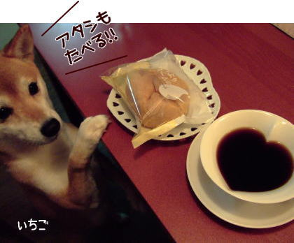 一緒に食べようね~