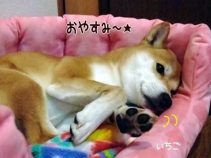 おやすみちゃん~