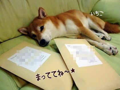 郵便屋さん、よろぴく~