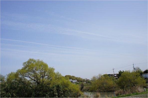 2011042101.jpg
