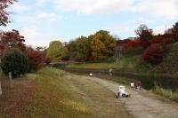 竜田川公園2