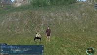 浦島とパンダ